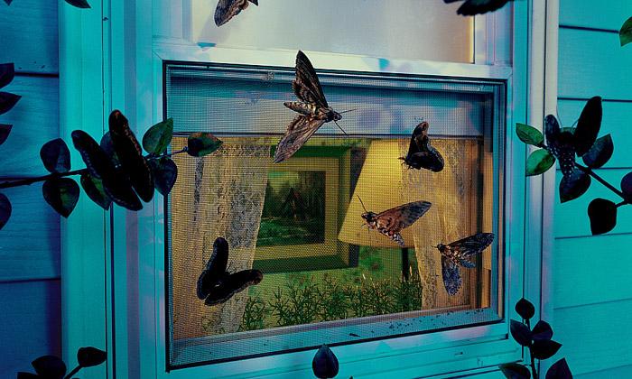 Gregory Crewdson ajeho záhadný americký obraz