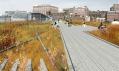 High Line a její volná prostranství na podzim
