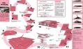 Plánované Muzeum automobilů v čínském městě Nanking od architektů 3Gatti
