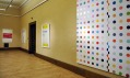 Damien Hirst v Galerii Rudolfinum
