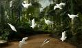 Daniel Piršč ajeho trojrozměrné porcelánové tapety – Birds