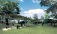 Pavilon Serpentine Gallery od SANAA na vizualizaci