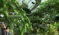 Připravované veřejné městské zahrady v zálivu v Singapuru