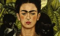 Ukázka zvýstavy Frida Khalo vMartin-Gropius-Bau