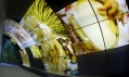Pavilon Brazílie na světové výstavě Expo 2010