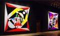 Adi Da Samraj a jeho předešlé výstavy