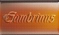 Nová láhev Gambrinus 11 XCLNT