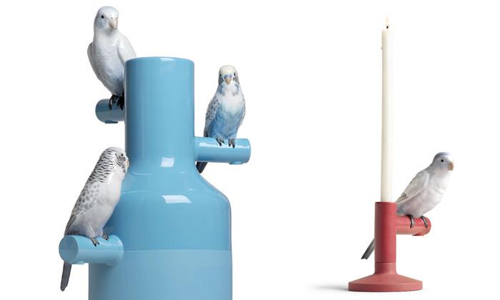 Qubus ukazuje naDesignbloku kolekci Parrot Party
