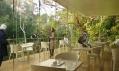 Nové petrohradské Primorskiy Zoo od TN Plus a Beckmann N'Thépé