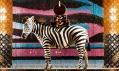 Ukázky nejzajímavějších výloh módních butiků aobchodů vPaříži