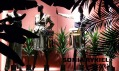 Ukázky nejzajímavějších výloh módních butiků a obchodů v Paříži