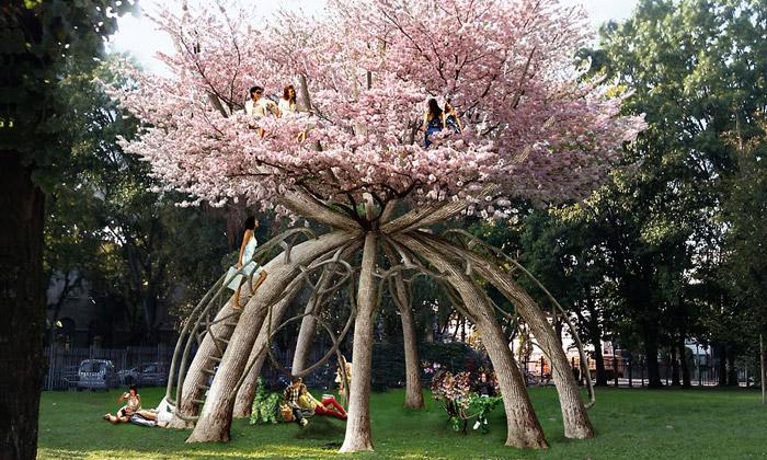 Visiondivision zasadili pavilon ztřešňových stromů