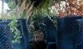 Ukázka jednoho z výsledků projektu Make A Forest se zalesněním autobusu