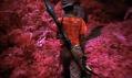 Richard Mosse a ukázka z jeho série fotografií Infra