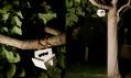 Budka pro netopýry Mus od Estres