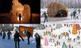 Přístřešky od Frank Gehry, Erickson a Warren, Soli a Roncoroni, University of Manitoba