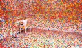 Yayoi Kusama a její pokoj The Obliteration Room v Queensland Art Gallery
