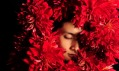 Hanayuishi Takaya a jeho květinové účesy