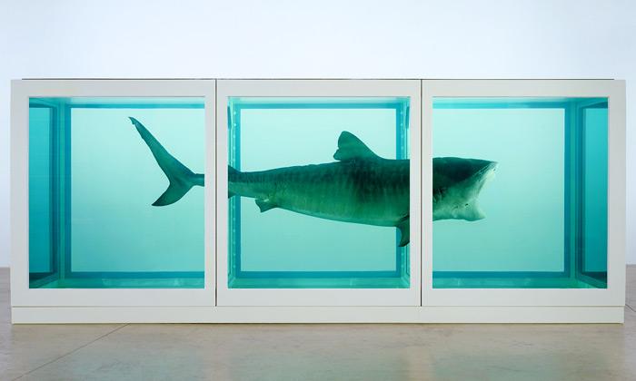 Damien Hirst vystavuje vLondýně žraloky imotýly