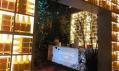 Rekorderlig Winter Forest Bar