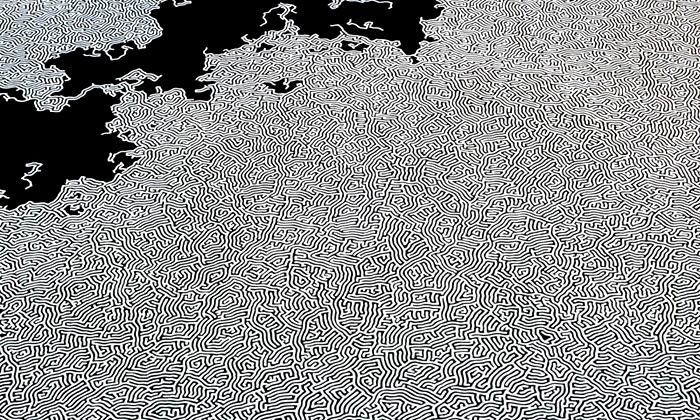 Motoi Yamamoto tvoří obrovské instalace jen ze soli