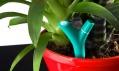 Mobilní strážce rostlin Flower Power od Parrot