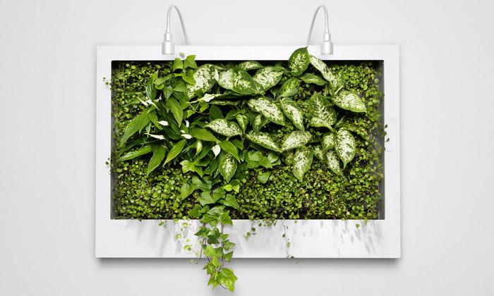 Greenworks připravují obraz plný zelených rostlin