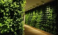 Greenworks a jejich Plant Walls