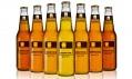 Vzorník piv Beertone jako netradiční průvodce