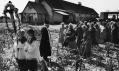 Jindřich Štreit a jeho vybrané fotografie z výstavy v Nizozemsku