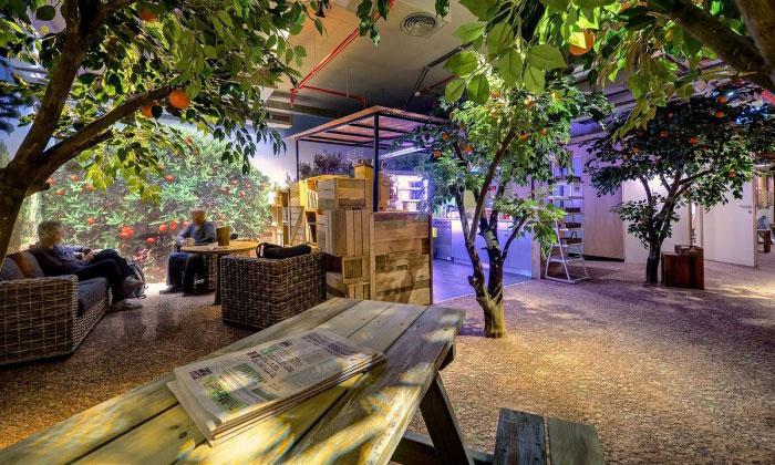 Google má vTel Avivu kanceláře spláží izahradou