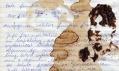 Pavel Příkaský a jeho malby ze skvrn