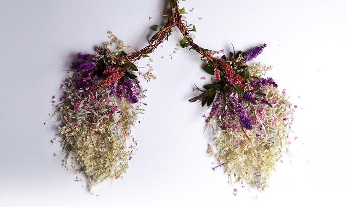 Britka nafotila lidské orgány vytvořené jen zkvětin