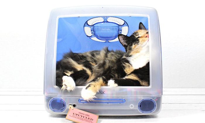 Atomic Attic vytváří kočičí pelíšky zpočítačů iMac