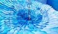 JeeYoung Lee a její instalace podle snů