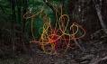 Thomas Jackson a jeho série fotografií Emergent Behavior