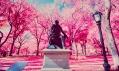 Sean Lynch a jeho infračervené fotografie z New Yorku