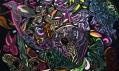 Ukázka zvýstavy Otto Placht: Metaformy pralesa