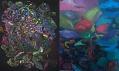 Ukázka z výstavy Otto Placht: Metaformy pralesa
