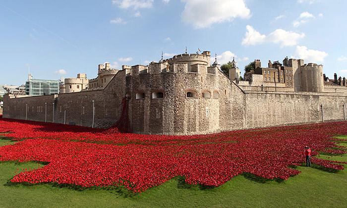 800000 keramických máků obklopilo britský palác