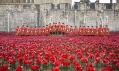 Instalace Blood Swept Lands and Seas of Red v Tower of London