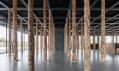 David Chipperfield a jeho Sticks and Stones, an Intervention