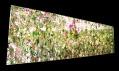 Instalace Floating Flower Garden od studia TeamLab