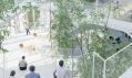 Nové vzdělávací centrum Arbre Blanc v Paříži