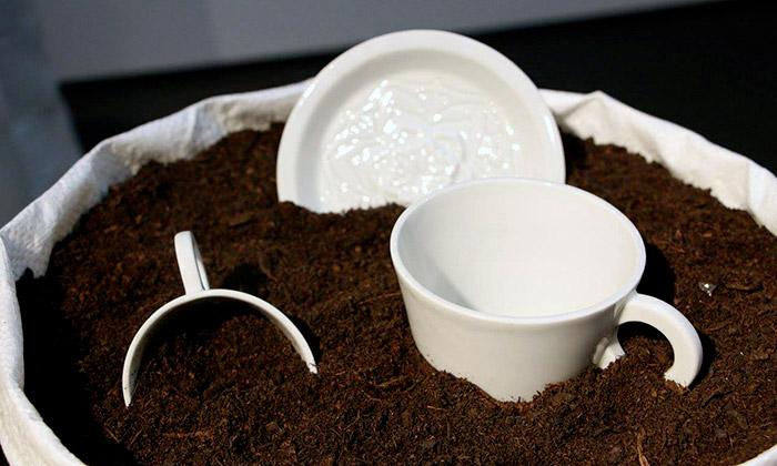 Nalejto navýstavě vPraze ukazují Jak roste porcelán