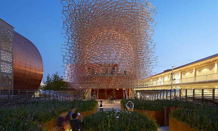 Britský pavilon naExpo 2015 bzučí jako včelí úl