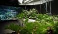 Zahrada ticha na Expo 2015