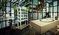 Výstava Domus s podtitulem Poutní místo současného designu