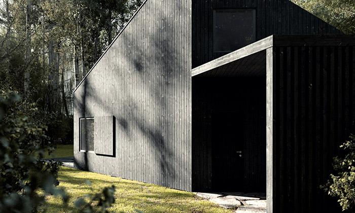 Też Architekci postavili vpolském lese černý dům