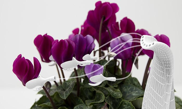PSX Consultancy navrhli rostlinám sexuální pomůcky
